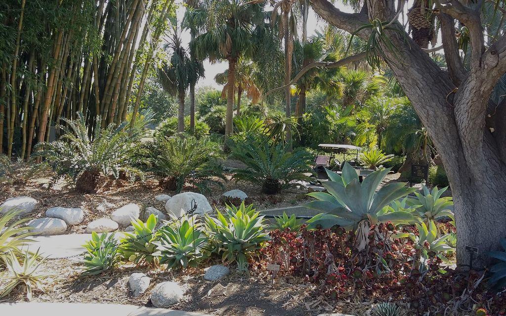 BGCI Botanic Garden Accreditation