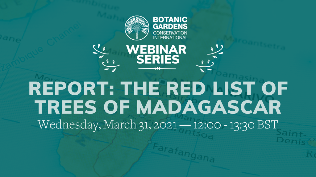 Red List of Trees of Madagascar