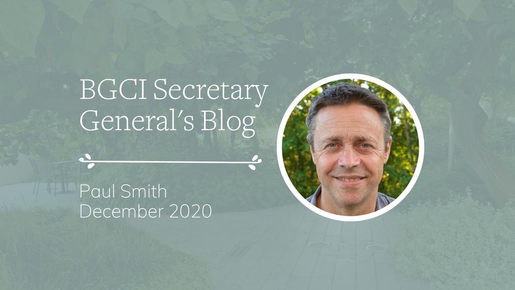 December 2020 Secretary General's Blog