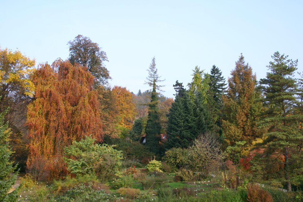 University Botanic Gardens Ljubljana