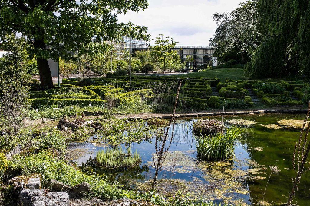 Ghent University Botanical Garden - ©Stad Gent - Dienst Toerisme