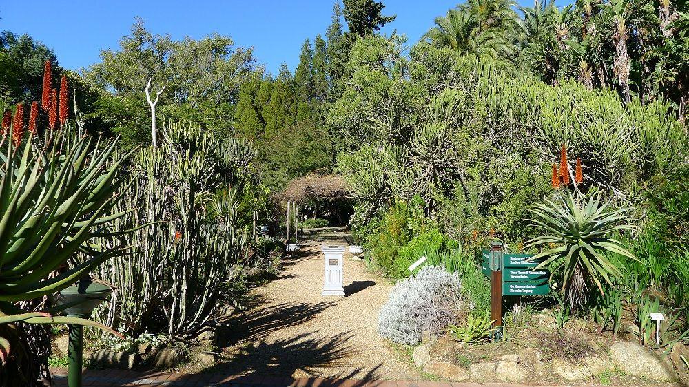 Stellenbosch University Botanical Gardens